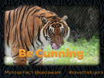 Presentation How to Unleash Your Inner Tiger: How to Succeed in Content Marketing